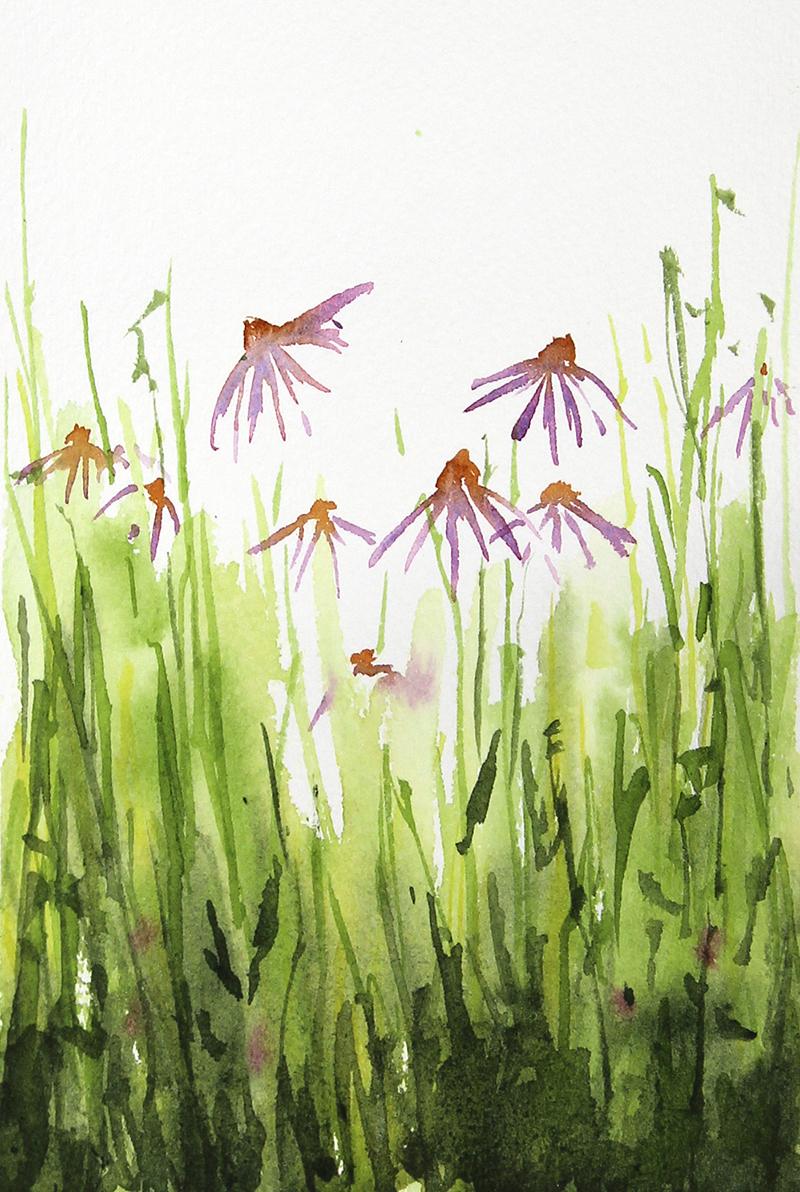 SOLD Echinacea & Clover