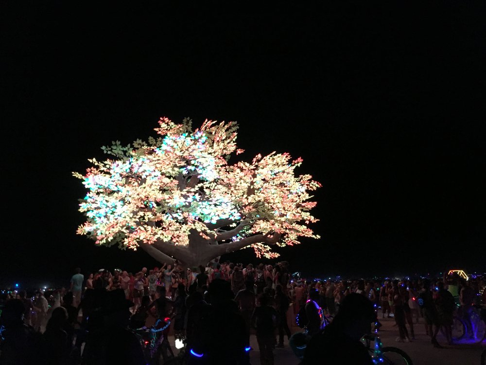 Even the trees are on drugs at Burning Man.