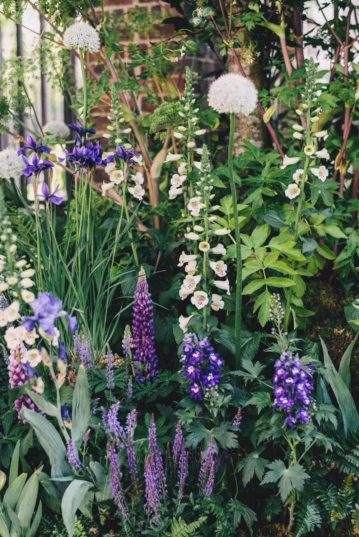 Chelsea Flower Show 27.jpg