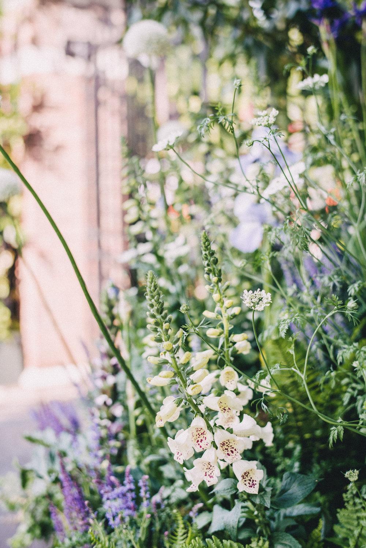 Chelsea Flower Show 60.jpg