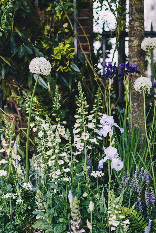 Chelsea Flower Show 66.jpg