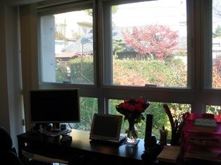 Optio Shot 12-11-2008 5-09-04 PM (4)