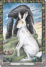 'Hare' by Bill Worthington, from 'The Druid Animal Oracle' by Phillip and Stephanie Carr-Gomm