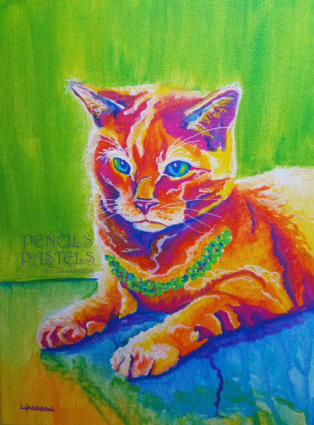 pop art cat pencils pastels by lisa harrisonpencils and pastels