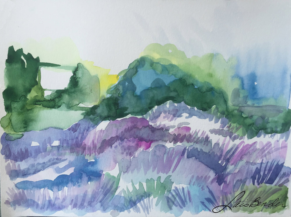 Lavender-field_1981.jpg