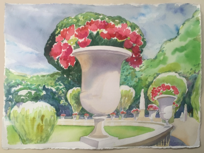 Urns of Geraniums at Luxembourg Gardens, Paris""