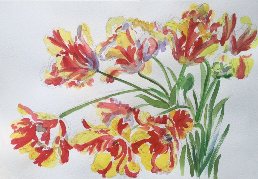 """Parrot Tulips I"""