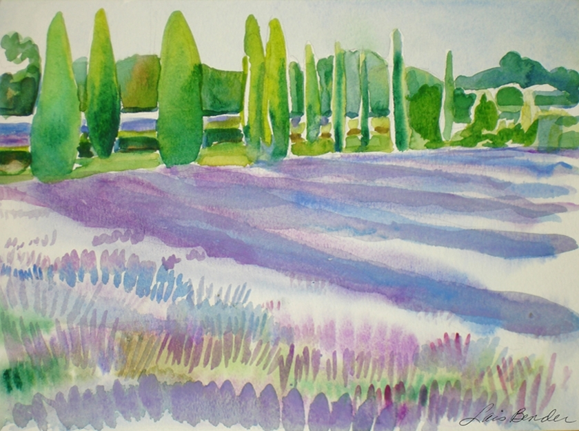 """Tuscan Cypresses and Lavender Fields"""