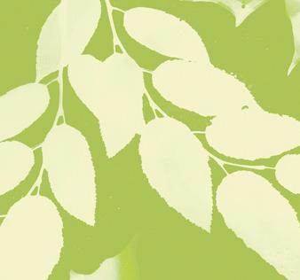 greenleaf-photo-3center1-2-1.jpg