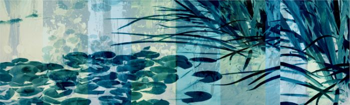 """""""Blue Pond II Surround"""""""