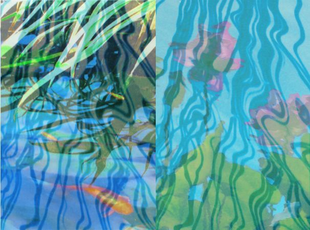 """""""Layers of Water Reflections with Koi,"""""""