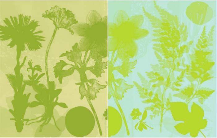 Resonates Image 9 from GardenSpirits.jpg