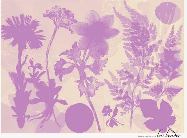 Resonates Image 10 from GardenSpirits.jpg