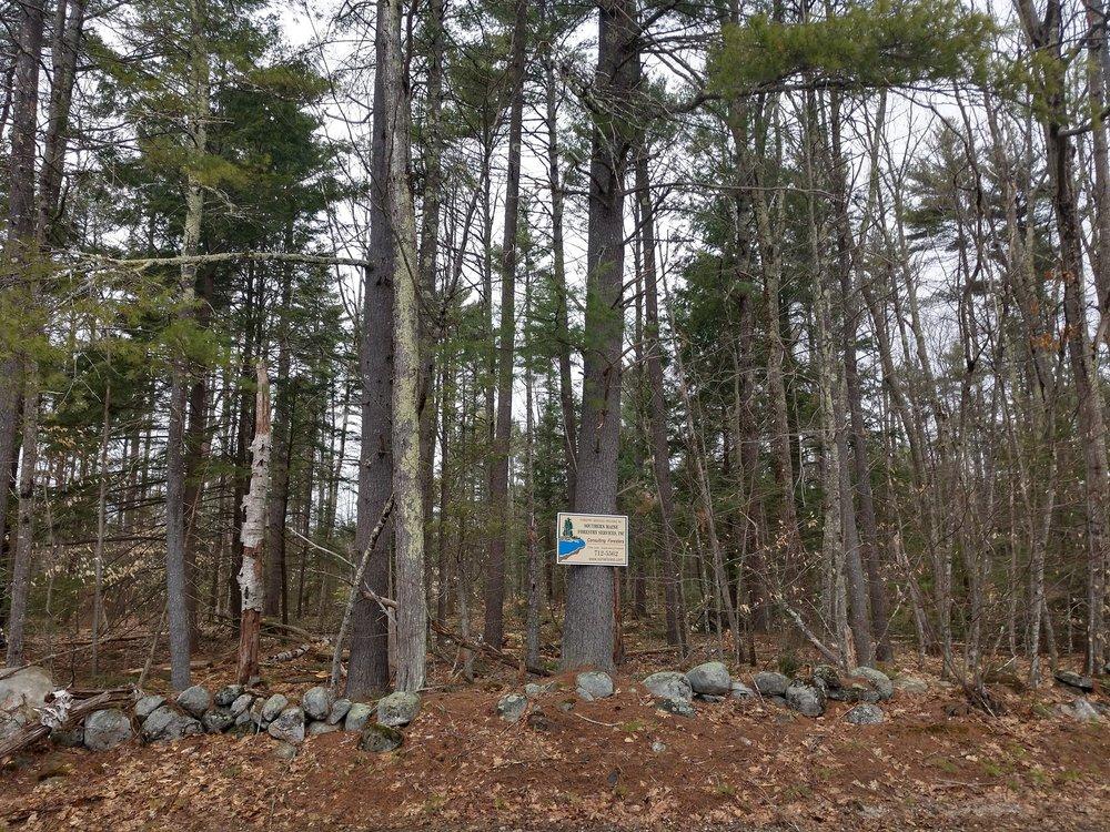 Auburn Site Sign.jpg