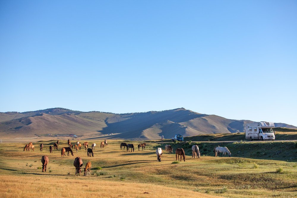 Mongolia.  photo courtesy of Johnny Swanepoel
