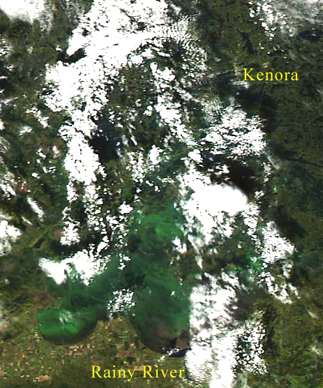 A satellite image from 2016 shows dense algae blooms across Lake of the Woods. The proliferation of algae blooms is one consequence of climate change that is already measurable in our watershed.