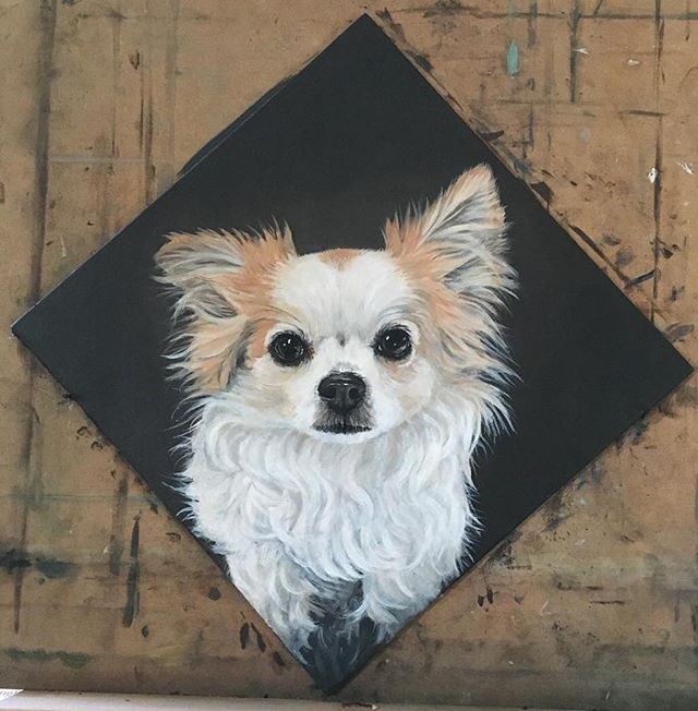 """I always knew my dog was a work of art...thank you my dear talented friend @teresaginori1 for making him into a museum piece! """"Nemo"""" oil on wood-panel🐕👑🎁❤️ #nemo #portrait #dog #chiuaua"""