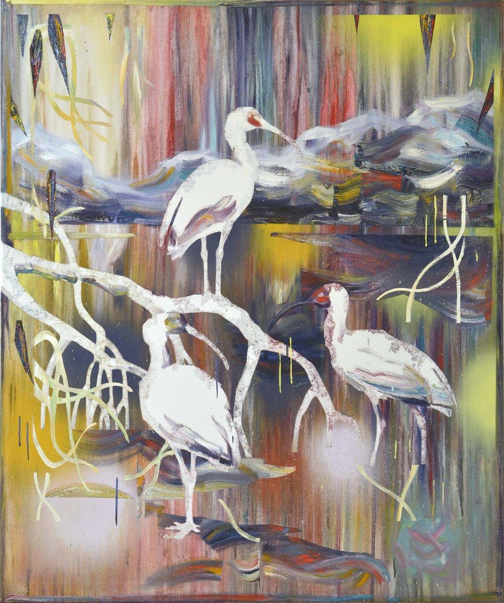 Ibis  oil on canvas 120 x 100 cm, 2017