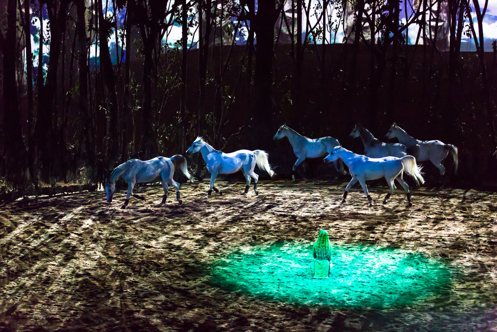 Chicago, IL - Odysseo by Cavalia - Opening Night 4.jpg