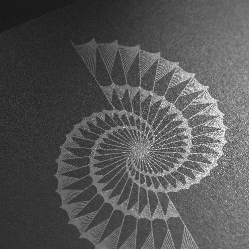 Serjan_Burlak_BiogenicDesign-Logo-Silver-4.jpg