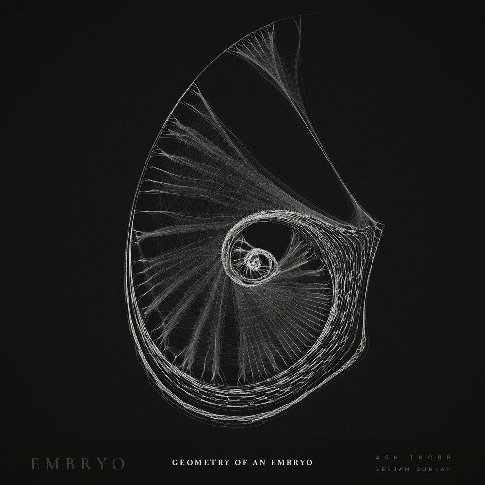 Geometry of an Embryo - Serjan Burlak - Ash Throp - 2.jpg