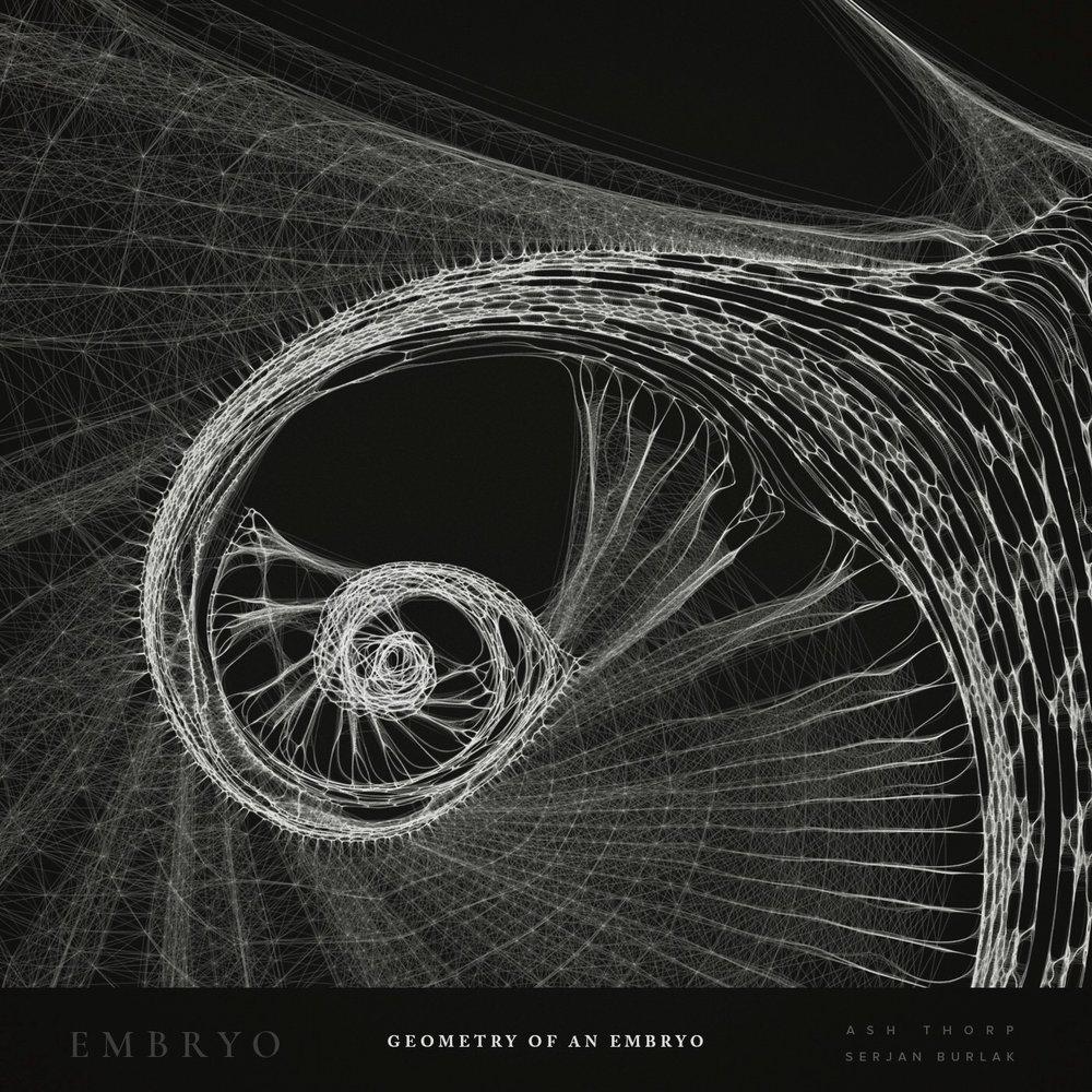 Geometry of an Embryo - Serjan Burlak - Ash Throp - 1.jpg