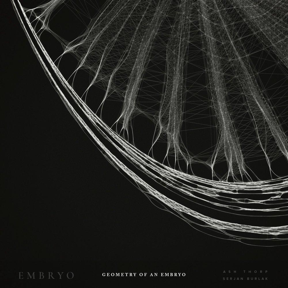 Geometry of an Embryo - Serjan Burlak - Ash Throp - 3.jpg