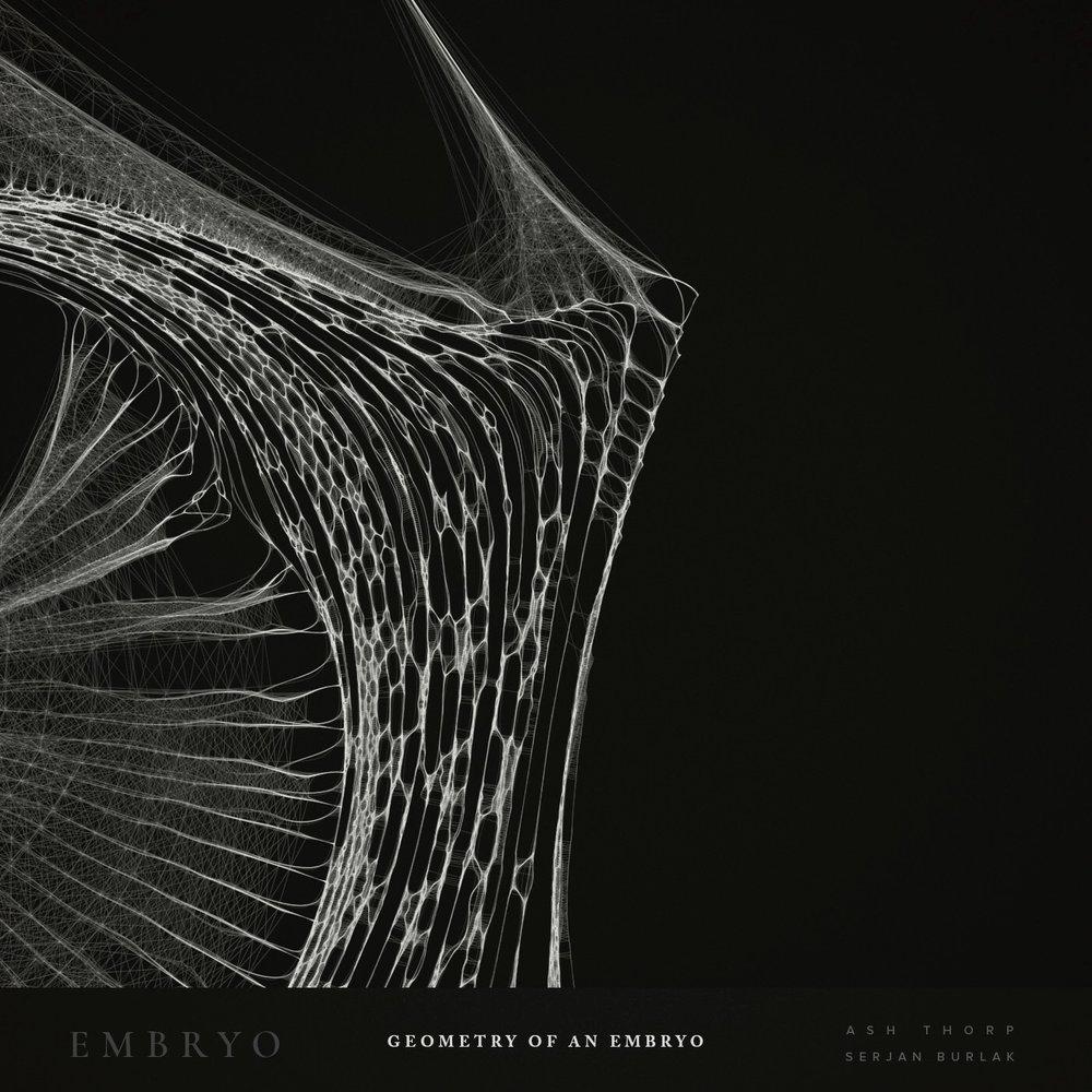 Geometry of an Embryo - Serjan Burlak - Ash Throp - 4.jpg