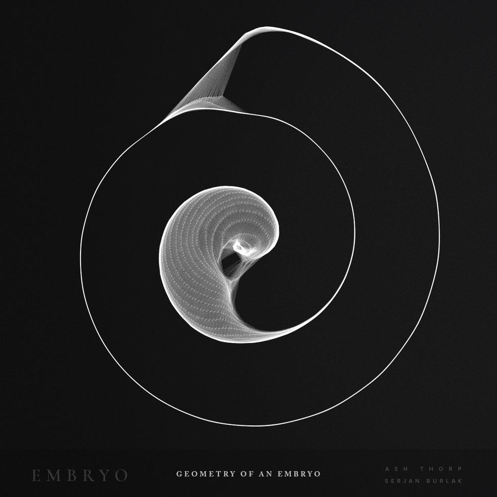 Geometry of an Embryo - Serjan Burlak - Ash Throp - 5.jpg