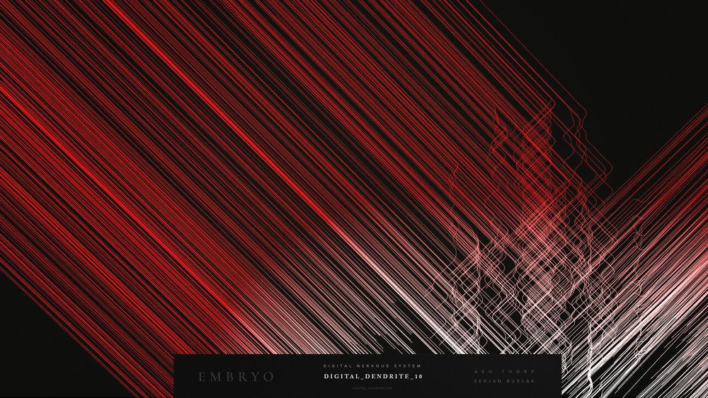 Embryo - Digital_Dendrites and HeartDigital_Dendrite_10-2_Serjan-Burlak_Ash_Thorp.jpg
