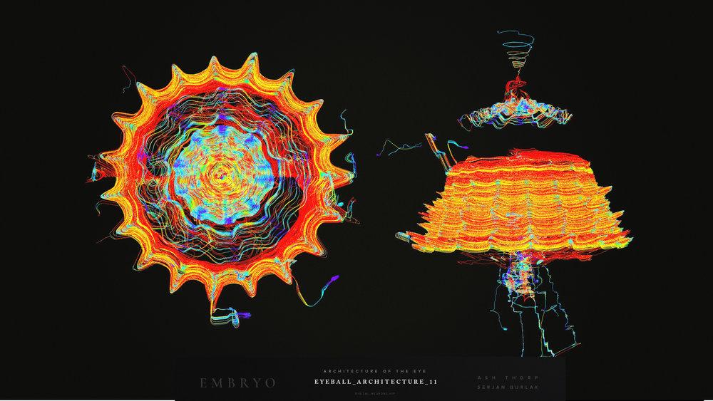 Embryo - Developemnt - Eye ArchitectureEyeball_Architecture_11_Serjan-Burlak_Ash_Thorp.jpg