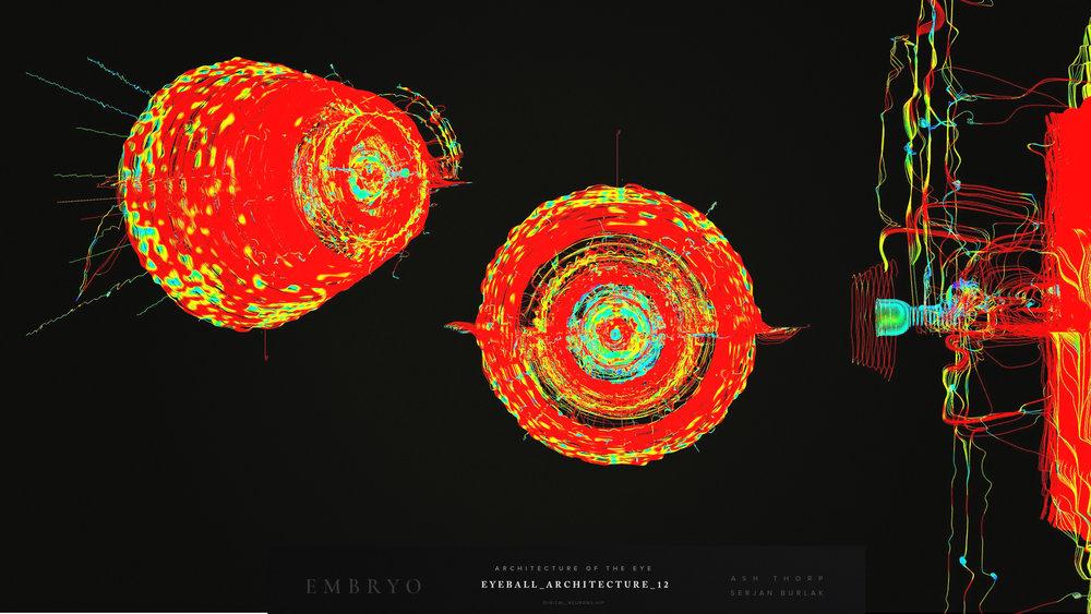 Embryo - Developemnt - Eye ArchitectureEyeball_Architecture_12_Serjan-Burlak_Ash_Thorp.jpg
