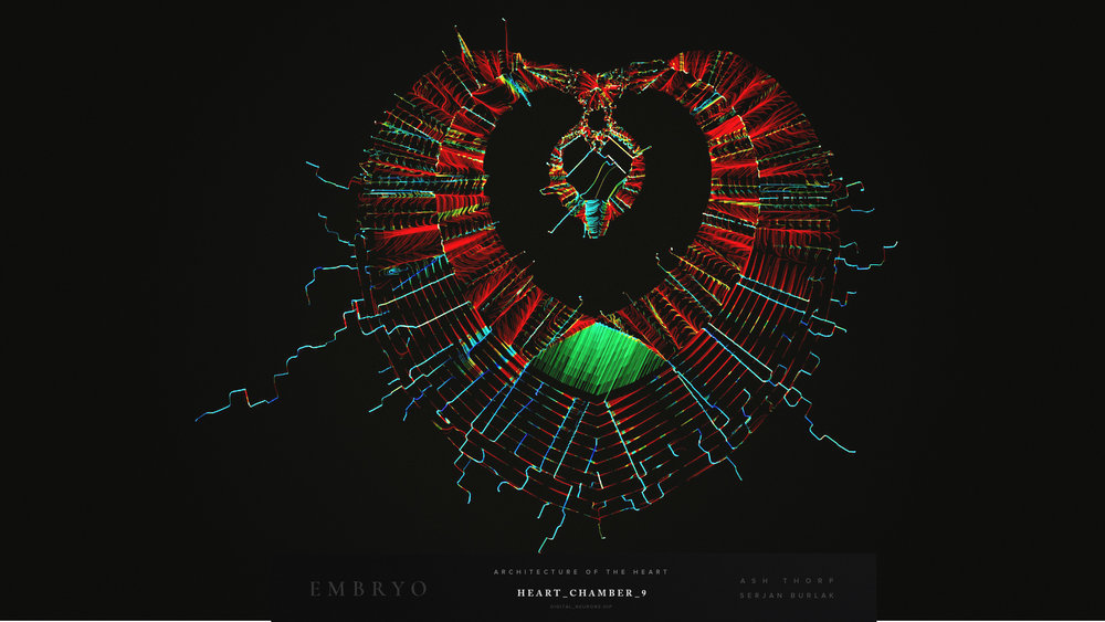 Architecture of the Heart - _Serjan-Burlak_Ash_Thorp_11.jpg