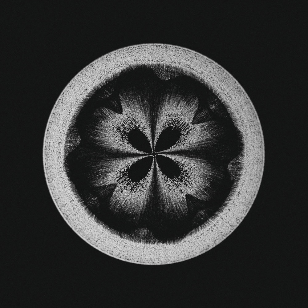Serjan-Burlak-Houdini-Cymatics_1.jpg