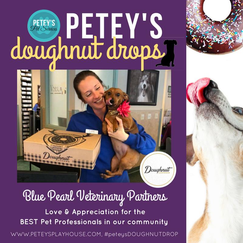 Copy of Copy of doughnut drops.png