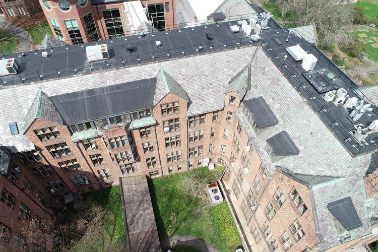 Mount Holyoke College Aerialgenomics