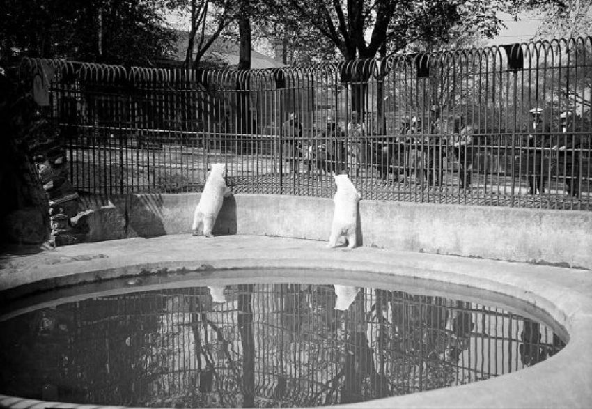 Riverdale Zoo, 1926