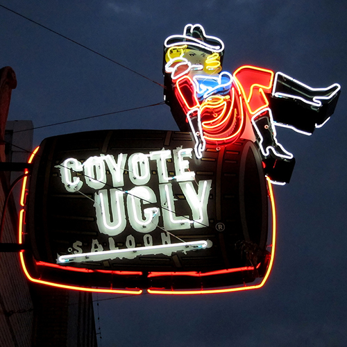 326 Beale St Coyote Ugly Saloon Learn More