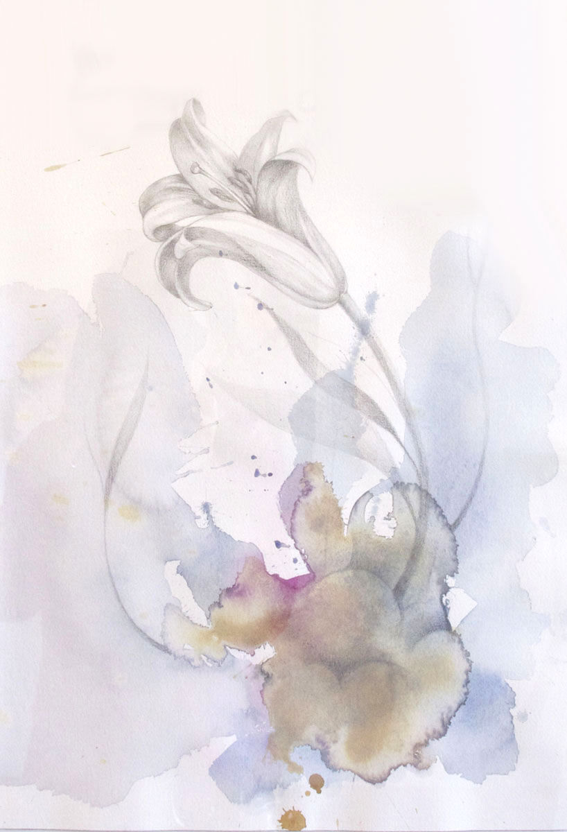 Untitled (Lillie Flower)