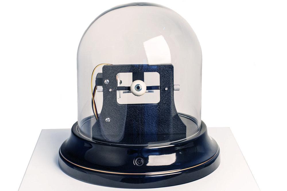 Look, Polychromed Metal, Microelectronics Edition of 5+ AP.jpg
