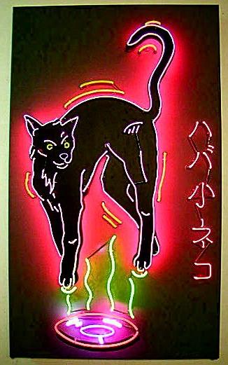 Hover Cat.jpeg