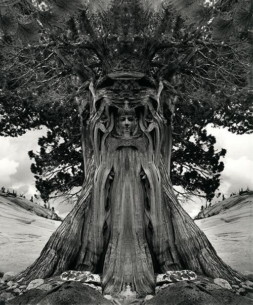 TreeGoddess_94.jpg