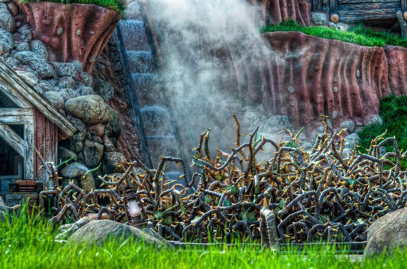 Splash Mountain photo