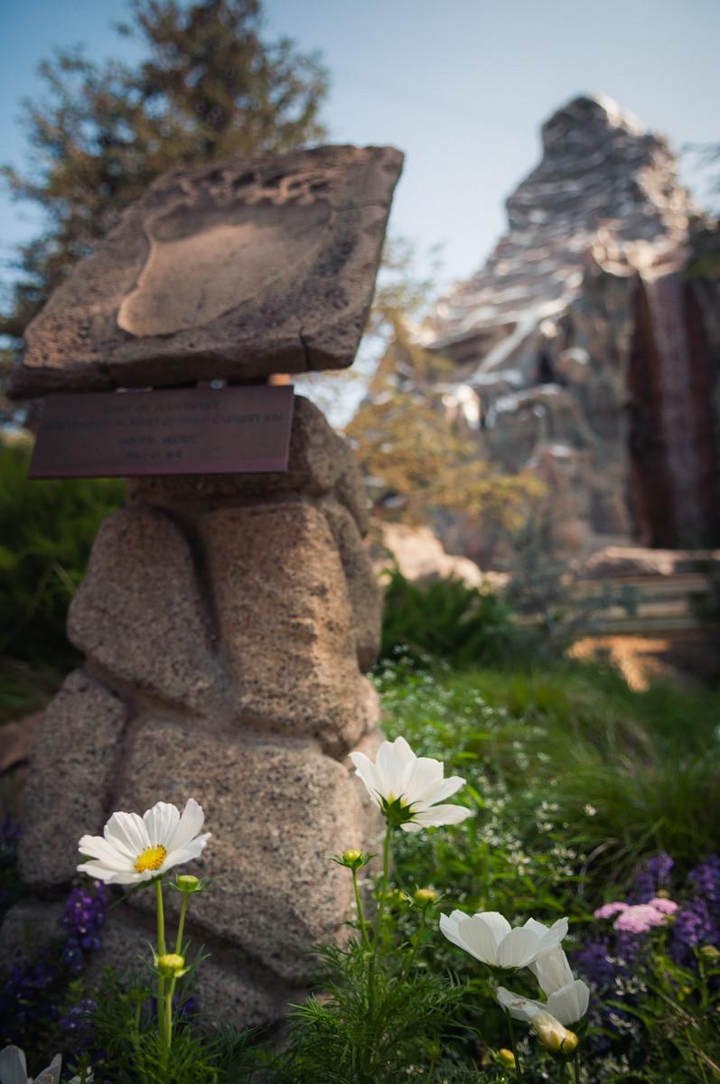 Best time to visit Disneyland