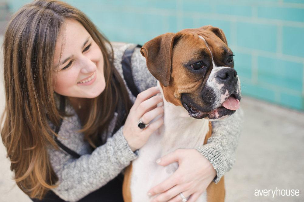 2 Chicago Engagement Shoot Avery House Photography boxer dog