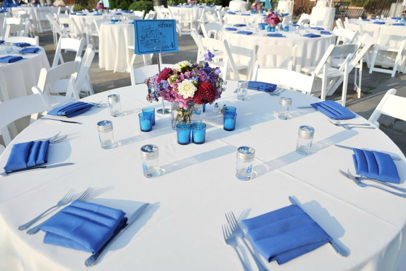3 Garfield Park Conservatory Wedding Sweetchic Peter Coombs blue white colors