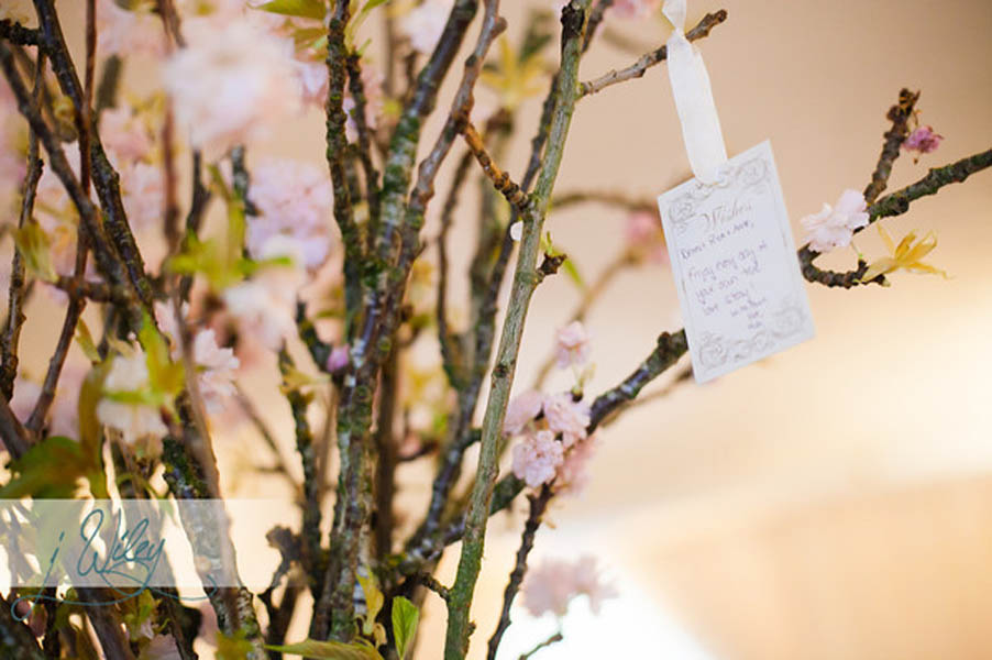 35. Anne. Rick The Rookery. J Wiley Photography. Sweetchic Events. Wish Cards. Cherry Blossom Stems. Vale of Enna