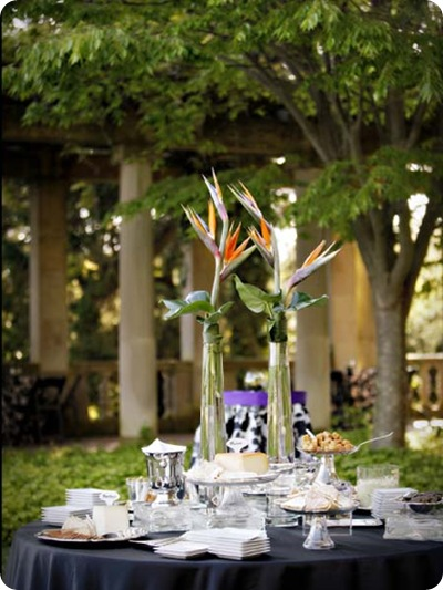 Bird of Paradise tablescape