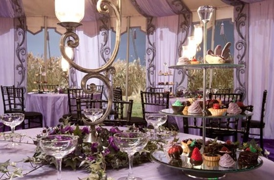 HP7 Bill Fleur wedding purple black chiavari chairs Source