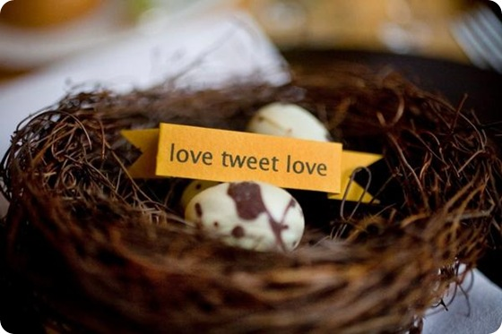 Sara France Photo love tweet love lovebird theme nest eggs